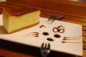 cheesecake-608963_1280