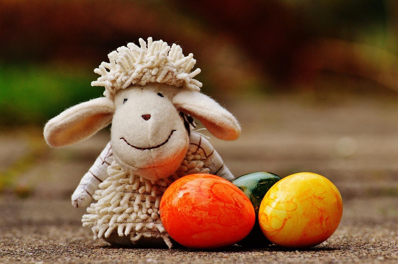 sheep-1272810_1280