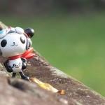 panda-z-1299683_1280