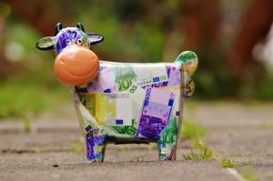 cow-1357210_1280