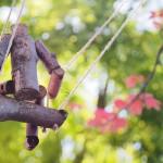 swing-1021842_1280
