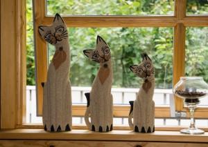cat-1053846_1280