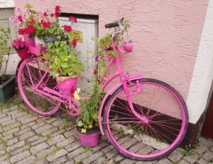 pink-1541533_1280