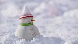 snow-man-3008179_640