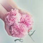 cloves-1367675_640
