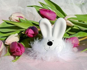 easter-bunny-3154055_640