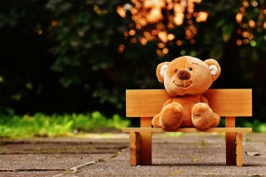 teddy-1640662_640