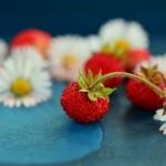strawberries-800521_1280