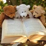 teddy-bear-2855982_640