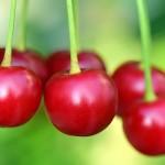 cherries-3477927_640
